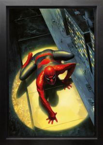 The Spectacular Spiderman - Canvas