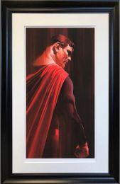 Superman 'Shadows Collection'