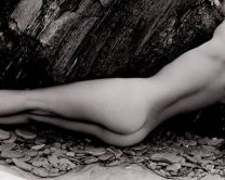 Nude and Rock 1985