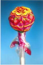 Still Life Lollipop